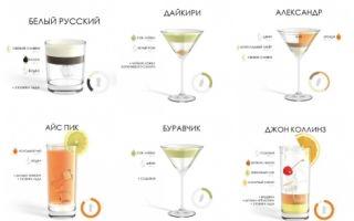Классические коктейли: виды классических напитков и как их приготовить дома
