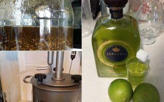 Абсент из самогона в домашних условиях: традиционные рецепты и список необходимых трав