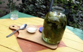 Настойка из черной смородины: подготовка ингредиентов и как правильно приготовить, польза растения