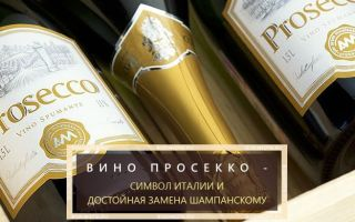 Просекко (Prosecco) шампанское: виды и особенности изготовления игристого вина, как правильно подавать и употреблять