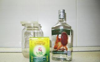 Настойка сабельника на водке: от чего помогает и что лечит растение, рецепты приготовления своими руками