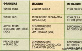 Категории вин: маркировки европейского алкоголя и смысл обозначений IGT, DOP, IGP, DOC, DOCG