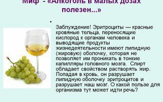 Вред и польза алкоголя: допустимые нормы потребления спиртных напитков