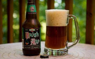 Ирландский эль: что это за напиток, история и разновидности особого пива