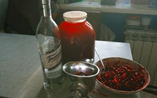 Настойки на спирту — рекомендации по приготовлению и пошаговые рецепты, как правильно пить