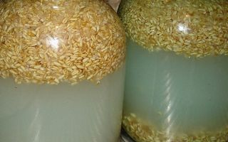 Брага на диких дрожжах пшеницы: ингредиенты и пропорции, технология приготовления домашнего самогона