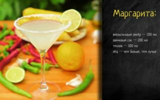 Коктейль Маргарита: история возникновения напитка, компоненты и классический рецепт приготовления