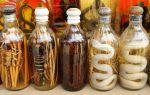 Как изготавливается водка со змеей и каковы ее целебные свойства — обзор экзотического напитка