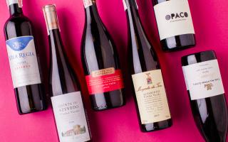 Португальское вино: классификация напитков Португалии, названия лучших продуктов виноделия