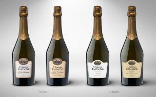 Шато Тамань шампанское: сорта винограда, виды напитка и отзывы покупателей, как правильно купить и подавать