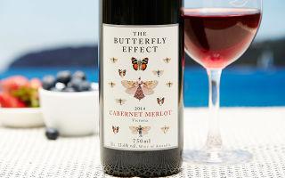 Мерло вино: описание и достоинства сорта винограда, как подавать напиток, известные бренды
