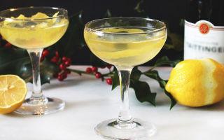 Коктейли с вином — список самых популярных напитков и как правильно их готовить