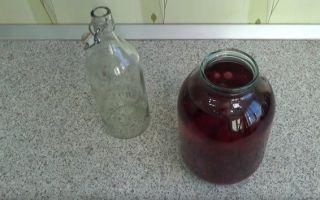 Настойка на клюкве: польза и вред напитка, как правильно приготовить и хранить