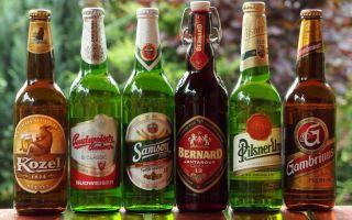 Чешское пиво: вкусовое разнообразие, топ 10 лучших сортов пенного напитка из Чехии