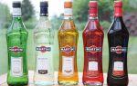 Мартини: история зарождения вермута, виды и названия легендарного напитка