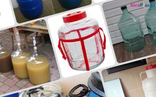 Емкость для браги: какие бывают и как выбрать правильную флягу для брожения в домашних условиях