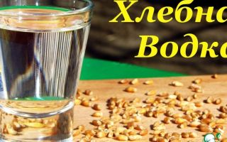 Водка пшеничная: список ингредиентов и этапы приготовления хлебного самогона