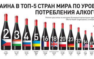 С чем пьют виски — список лучших закусок и правила приготовления коктейлей с крепким алкоголем, правила подачи напитка