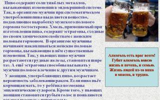 Женские гормоны в пиве: польза и вред напитка для женского и мужского организма