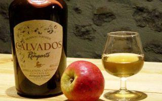 Кальвадос: история, страна происхождения и общие сведения, как правильно выбрать и пить напиток
