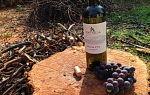 Крымские вина: названия и марки лучших напитков, как подавать алкоголь и правильно его пить