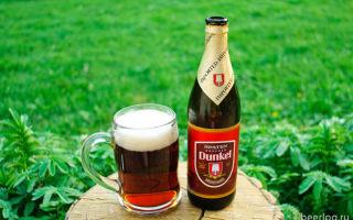 Пиво Spaten (Шпатен): особенности, производитель и продуктовая линейка пивного напитка, правильный выбор закуски