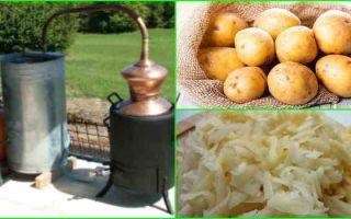 Самогон из картофеля: выбор сорта и простой рецепт приготовления браги своими руками