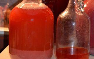 Грог: состав и история появления, как приготовить вкусный алкогольный напиток своими руками