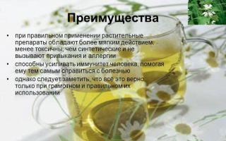Самые эффективные народные средства от алкоголизма без ведома больного: преимущества терапии, самые действенные рецепты и медикаменты