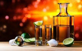 Водка из кактуса: классификация и лучшие марки напитка, как приготовить текилу дома