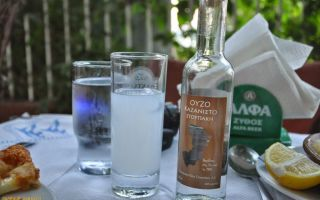 Греческая водка: история анисового алкоголя, способы употребления и как приготовить напиток в домашних условиях