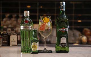 Вермут Мартини Экстра Драй: состав и история напитка, как и с чем правильно употреблять известный алкоголь