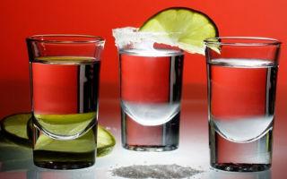 Из чего делают текилу: основные ингредиенты популярного напитка, технология приготовления и как правильно употреблять
