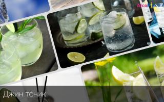 Джин-тоник: что это такое, состав напитка, как правильно готовить и пить коктейль