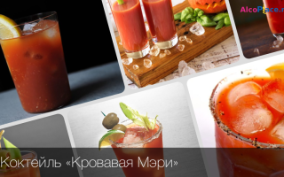 Кровавая Мэри: состав и классический рецепт приготовления коктейля, как правильно подавать напиток