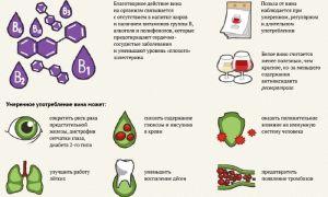 Белое вино: польза и вред сухого и сладкого напитка для мужчин и женщин