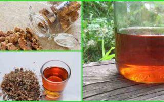 Настойка калгана: полезные свойства растения, как приготовить напиток и пить?
