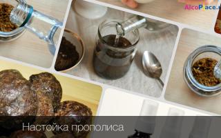 Настойка прополиса на спирту: особенности спиртового лекарства, как грамотно приготовить и использовать