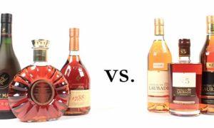 Арманьяк и коньяк: разница между напитками и что лучше выбрать?
