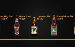 IBU пиво: методика измерения горечи пива и таблица расчета показателя