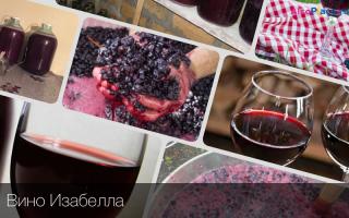 Вино Изабелла: этапы производства и простой рецепт приготовления в домашних условиях