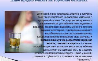 Можно ли пить пиво каждый день — последствия пивного алкоголизма для мужского и женского организма, есть ли безопасные дозы