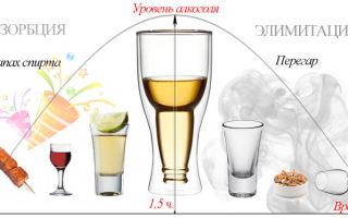 Как быстро протрезветь в домашних условиях: простые советы отрезвления и как ускорить процесс вывода алкоголя из организма