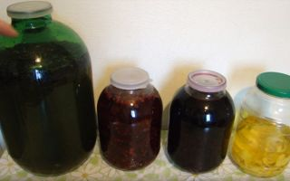 Самогон на клюкве: как приготовить и использовать напиток, полезные свойства ягоды
