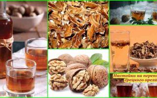 Настойка на перегородках грецкого ореха на водке: секрет изготовления и применение в лечебных целях