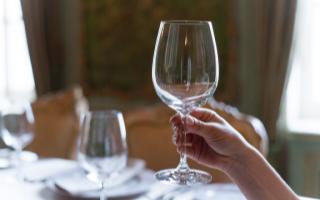 Как правильно держать бокал с вином: винный этикет и правила сервировки бокалов
