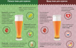Польза пива: интересные факты, правда и мифы о вреде пенного напитка для организма человека