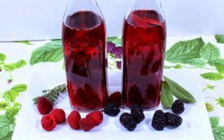 Малиновое вино — подготовка ягоды и технология приготовления ароматного алкогольного напитка