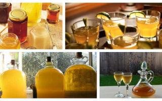 Вкусный самогон из меда: точные пропорции ингредиентов и основные правила приготовления напитка