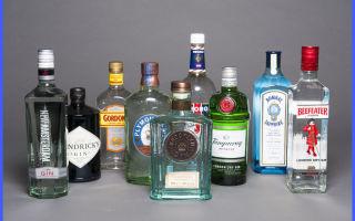 Джин напиток: что это такое, как правильно выбрать и пить, советы для качественного приготовления алкоголя